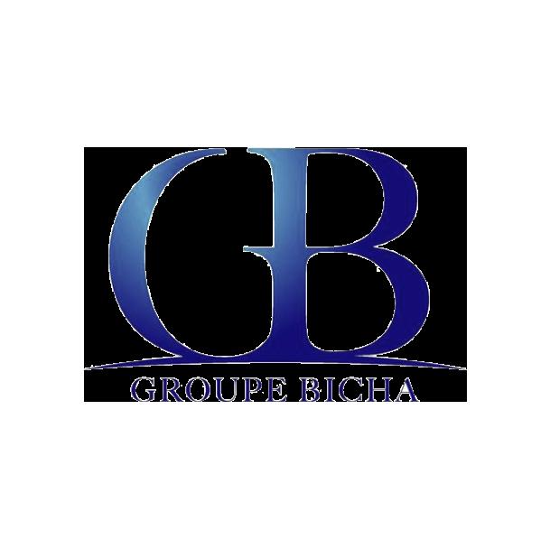 Groupe BICHA